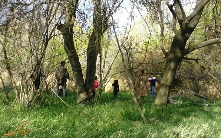 حفاظت از محیط زیست در طبیعت گردی های نوروزی